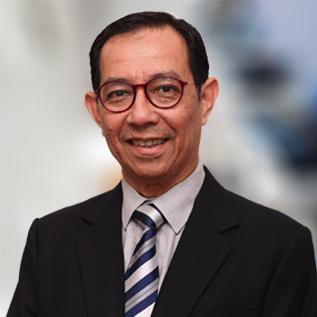 Prof Tan Sri Dato' Dzulkifli Abdul Razak